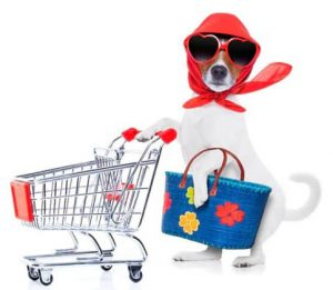 Pet Shop Header Image Dog with Cart