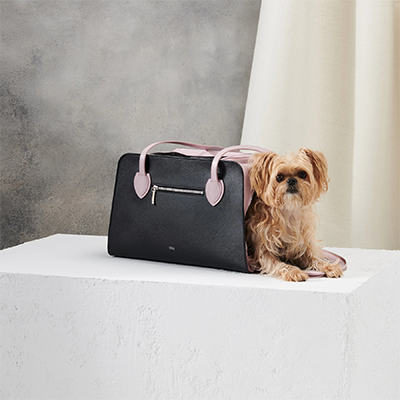 Blush Shaya Pet Carrier - Doolittle's Doghouse Shop