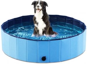 Portable Pool for dogs