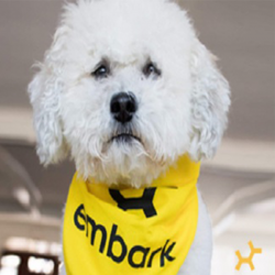 embark-additional-photos-doolittles-doghouse-1